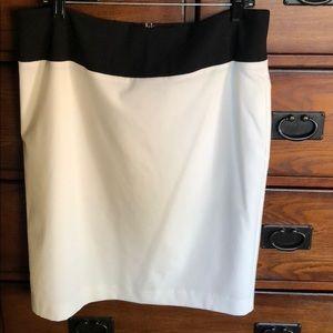 Sophisticated Ellen Tracy knee length skirt